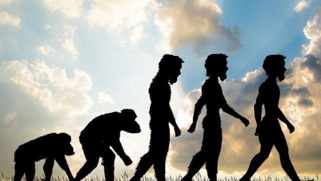 de ce au fost avantajoase tulburarile mintale in evolutie