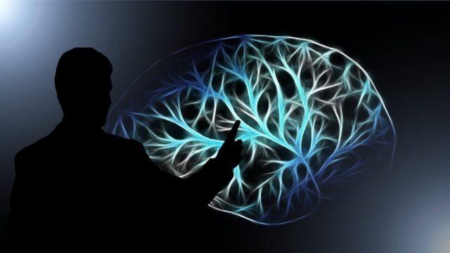 un semn comun pentru un creier sanatos